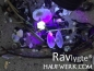 Mobile Preview: Ravlygte® Professionel V – Bernstein-Suchlampe mit 5 LED